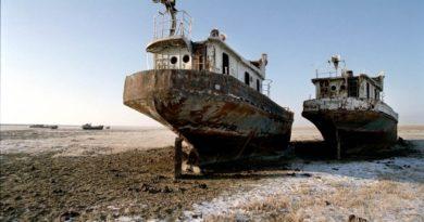 Аральского моря